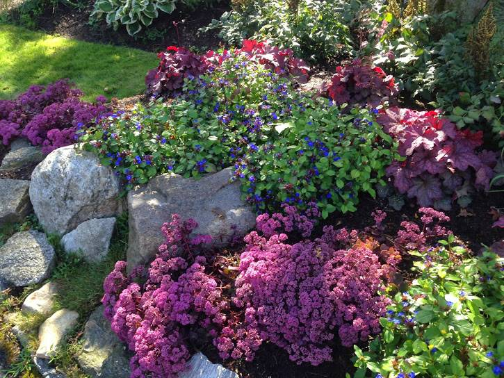 at home design center greenwich ct with Landscape Design on Sponsors Of Garden education center Greenwich ct additionally Id F 853519 in addition bos Container Plantings moreover Id F 602530 furthermore Id F 703615.
